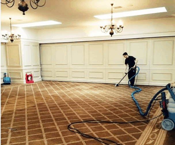 Carpet Cleaning Maintenance for High-Traffic Areas - Tattersalls