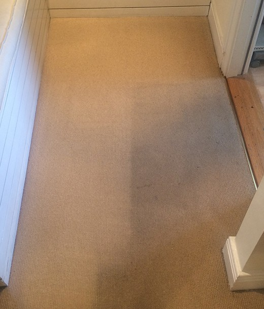 Expert-Carpet-Cleaners