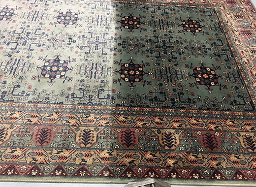 Rug-Cleaning-Dublin-in-Progress