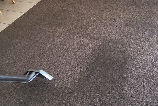Family-Carpet-Cleaning-Company