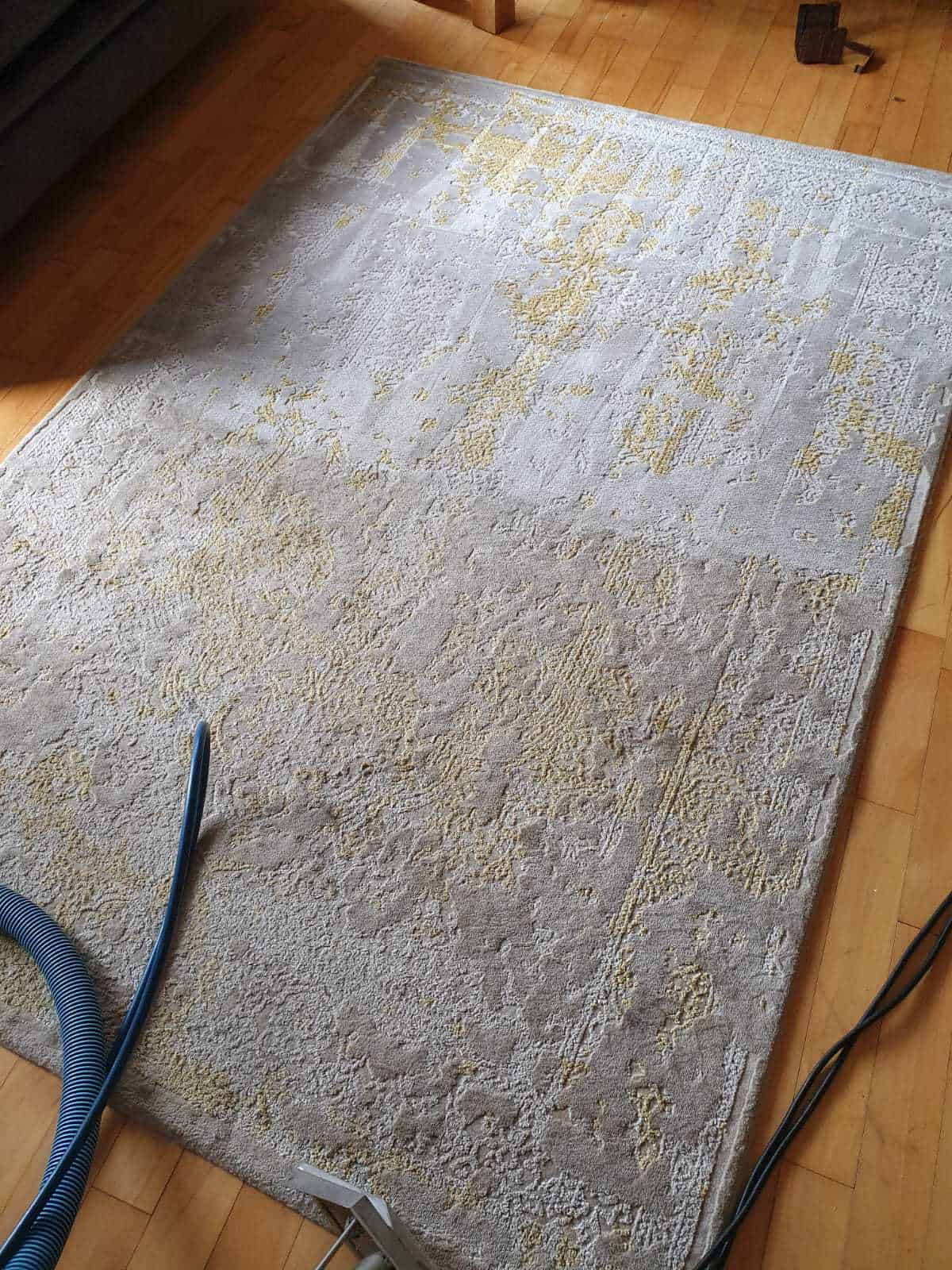 Photo mid-way through cleaning a rug