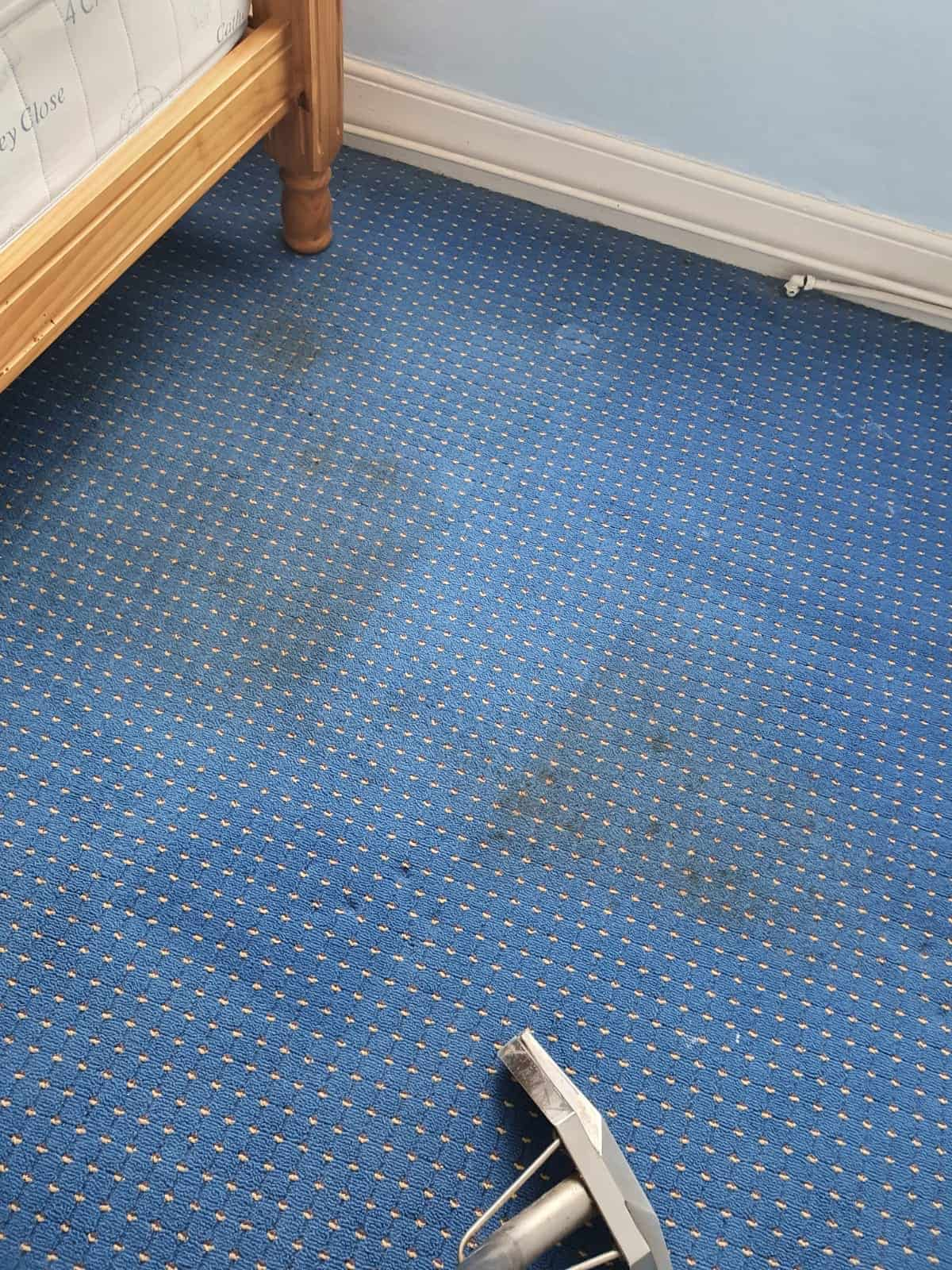 A before image of domestic carpets which have had a carpet cleaning service
